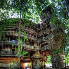 Horace Burgess (in Tennessee) built a tree house, with a whopping 1,000 square meters (nearly 11,000 square feet) and standing 90 feet tall! It took fifteen years.