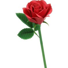 Flower Arrangement:  Rose (Red),Decorative,Paper Craft,red,Interior ,flower,Plant ,Flower arrangement,present