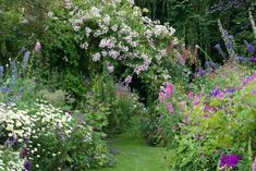 wpid18658-Midsummer-Cottage-Garden-GHGH022-nicola-stocken.jpg