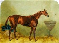 Favonius a bay racehorse in a stable by Harry Hall