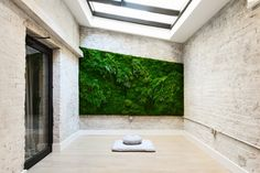 Can #LivingWalls be a DIY project? Read this. #IndoorPlants http://www.vogue.com/13436169/homes-living-wall-green-wall-plant-build/