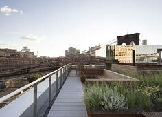 Gallery of James Corner Field Operations Highlights New York's Skyline with Rooftop Garden - 7