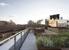 Galeria de James Corner Field Operations projeta cobertura jardim no Brooklyn, Nova Iorque - 7