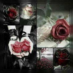 1ce807da03 64 melhores imagens de rosa caveira