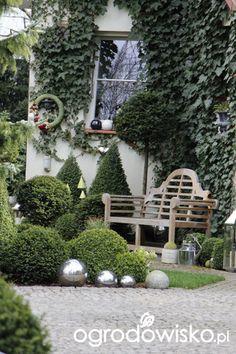 Ogród nie tylko bukszpanowy - część III - strona 513 - Forum ogrodnicze - Ogrodowisko Front Porch Garden, Corner Garden, Front Yard Landscaping, Topiary Garden, Garden Seating, Shade Garden, Garden Beds, Garden Bridge, Amazing Gardens