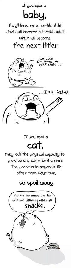 Having A Baby Versus Having A Cat, Which One Is Better? #baby#cat#cats#kitty#havingababyversushavingacat#whichoneisbetter#child#children #humor#5