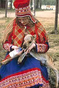 saami. Because of centuries of I mix with later groups Sami are a mix of faces. There are around 40,000 to 70,000 Sami in Norway,20,000in Sweden , <7000 in Finland , and <2000 in Russia. These numbers are for part Sami people not those who Speke Sami languages.: