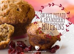Mila's Meals Sweet Potato and Cranberry Muffins Recipe - (gluten-free, dairy-free, refined sugar-free) With the cinnamon, nutmeg and cranberries… these muffins just smell and taste like Christmas! Sweet Potato Muffins, Cranberry Muffins, Healthy Food, Healthy Recipes, Fitness Pal, Cranberries, Muffin Recipes, Christmas Recipes, Gluten Free Recipes