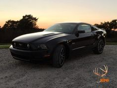 Post pics of your black stang! - The Mustang Source - Ford Mustang Forums Mustang Gt500, Shelby Mustang, Ford Mustang Forum, Black Mustang, Image