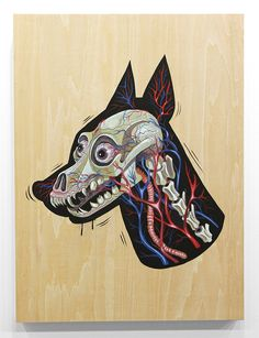 X-ray of a doberman by NYCHOS