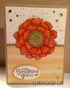Stampin Up Blended Bloom Calypso Coral Blendabilities by Stamp Right Up