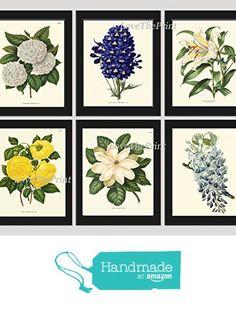 Botanical Flower Print Set of 6 Prints Antique Beautiful White Blue Yellow Hydrangea Large Lily Magnolia Rose Spring Summer Garden Nature Home Room Decor Wall Art Unframed from LoveThePrint https://www.amazon.com/dp/B01LR2K446/ref=hnd_sw_r_pi_dp_-cAXybZ3KCVYJ #handmadeatamazon