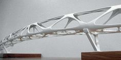 Andreas Schnubel / Structural Design / Organic Pedestrian Bridges
