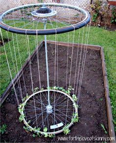 bicycle wheels are no longer trellis garden