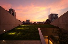 Grass Building / Ryo Matsui Architects