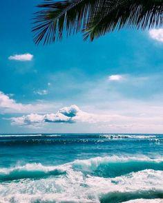 Tropical Island Adventures :: Escape to a Beach Paradise :: Soak in the Sun :: Palms + Ocean Air :: Discover more Island Life Inspiration No Wave, The Beach, Ocean Beach, Summer Beach, Ocean Waves, Ocean Photos, Beach Waves, Summer Sun, Ocean Pictures