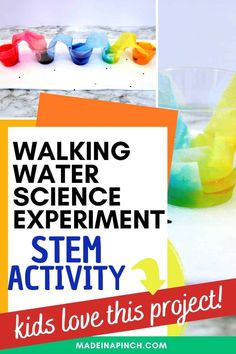 Rainbow walking water experiment for kids. An easy science project for kids with a ton of WOW factor and free printable walking water worksheet. This walking rainbow experiment is perfect for preschoolers, kids, and adults alike. So much fun! #walkingwater #scienceforkids #scienceexperiment #rainbowwalkingwater