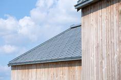 rheinzink scale tile roofing, Douglas fir facade cladding
