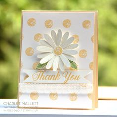 Hi guys and happy Monday! Daisy Delight is the challenge stamp set over on the What Will Yo stamp blog. What does that mean? Every Monday, a group of stampers create projects using a preselected stamp set. Our goal is to show you some of the many ways a set can be used. If you have this stamp
