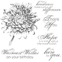 Stampingleeyours: Blooming With Kindness & The Stamper's Dozen Blog Hop   GOOD CARD BUT WILL NOT POST