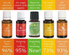 Young Living Citrus Essential Oils | For more info or to order, come visit:  www.thesavvyoiler.com.