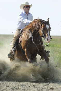 Custom Del Cielo Reining Horses, Western Riding, Show Horses, Equestrian, Riding Helmets, Pony, Horse Stuff, Horses, Animals