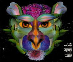 Il volto della natura  Un volto animale creato assemblando foto di petali di fiori. E' un simbolo della ricchezza della natura.