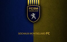 Download wallpapers FC Sochaux-Montbeliard, French football club, 4k, Ligue 2, leather texture, logo, Montbeliard, France, second division, football