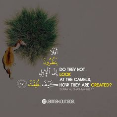 Quran Verses, Quran Quotes, Real Love, True Love, Dua For Ramadan, Islamic Quotes Wallpaper, Noble Quran, Islamic Qoutes, Names Of God