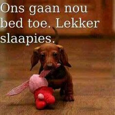 This Photo was uploaded by Good Night Sleep Tight, Goeie Nag, Goeie More, Good Night Quotes, Afrikaans, Bible Quotes, Cute Pictures, Feelings, Sayings