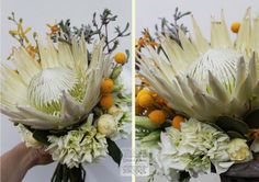 Stunning proteas - feature flower for this white bouquet