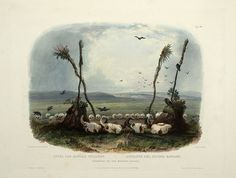 Offering of the Mandan Indians, aquatint by Karl Bodmer