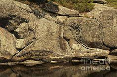 Rock Lines by Elaine Mikkelstrup