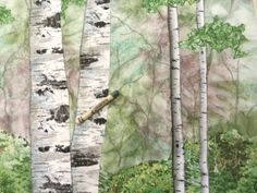 16. A closeup of the drawn crayon saplings