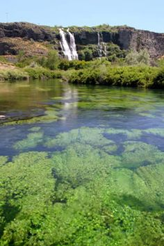 Witness some of the most spectacular water displays on a tour of Thousand Springs. Watch as some springs thought to be the re-emergence of [more]...