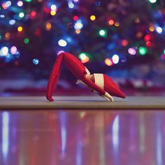 Yoga Elf