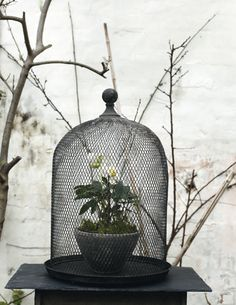 "The Nordic Way of Life or ""Broste Copenhagen"" Autumn & Winter 2011 ♥ Северният начин на живот или ""Бросте Копенхаген"" Каталог есен / зима 2011 | 79 Ideas"