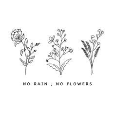 no rain no flowers Aesthetic Painting, Aesthetic Drawing, Flower Aesthetic, Aesthetic Gif, No Rain No Flowers, Dark Flowers, Embroidery Patterns, Hand Embroidery, T-shirt Broderie