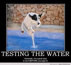 Spectacular Image result for funny dog quotes