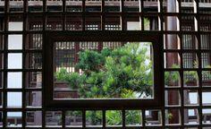 Feng shui, la armonía que lleva a la felicidad: Disciplina tradicional china basada en la orientación de espacios y objetos para crear hogares armoniosos que contribuyan a la felicidad.