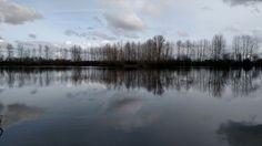 Woodburn Pond,  February 2016