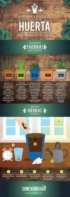 Home furnishings Carro ffxv gardening for beginners uk . Best Picture For Garden Types ideas For Y Garden Care, Eco Garden, Home Vegetable Garden, Indoor Garden, Garden Cottage, Garden Pool, Garden Ideas, Hydroponic Gardening, Hydroponics