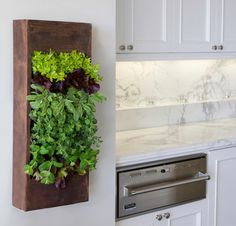 Kitchen and Garden: A Perfect Pairing