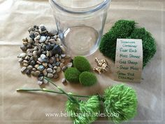 Super fast and easy. Cheap. Customizable. Long lasting.   Belles & Thistles Floral Design » DIY Moss Terrarium