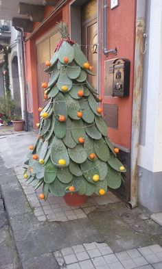 Christmas tree, Sicilian style. It's made of Prickly Pear plant 'paddles'.