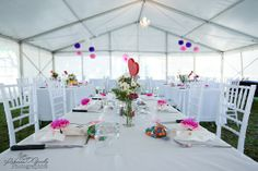 Rockhampton Budget Wedding