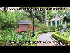 GYIK-98 Lehet e kerítés helyet Csodasövény® ? - YouTube Outdoor Decor, Youtube, Plants, House, Home Decor, Homemade Home Decor, Home, Flora, Haus