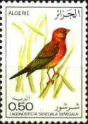Lagonosticta senegala, Algerian Birds, post stamp 1975