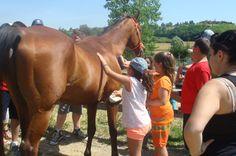 i bambini del Summer Camp di Serralunga di Crea :)