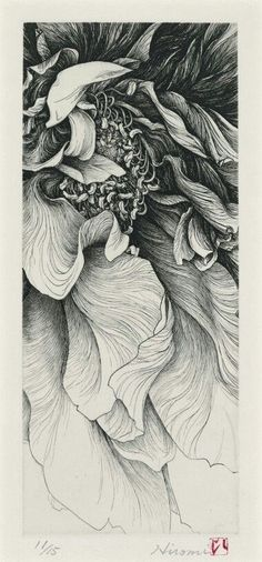 Line Drawings, Artists, Flower Line Drawing, Illustration